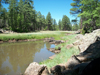 Pinetop, Arizona